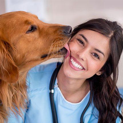 Dog licking vet's face: Animal Hospital in Austin